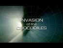 BBC Мир природы. Вторжение крокодилов / The Natural World 2006