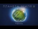 Планета Земля II Часть 5 Равнины BBC Прямая трансляция Vert Dider