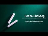 Белла Сильвер - первый обзор Яромира Климчука