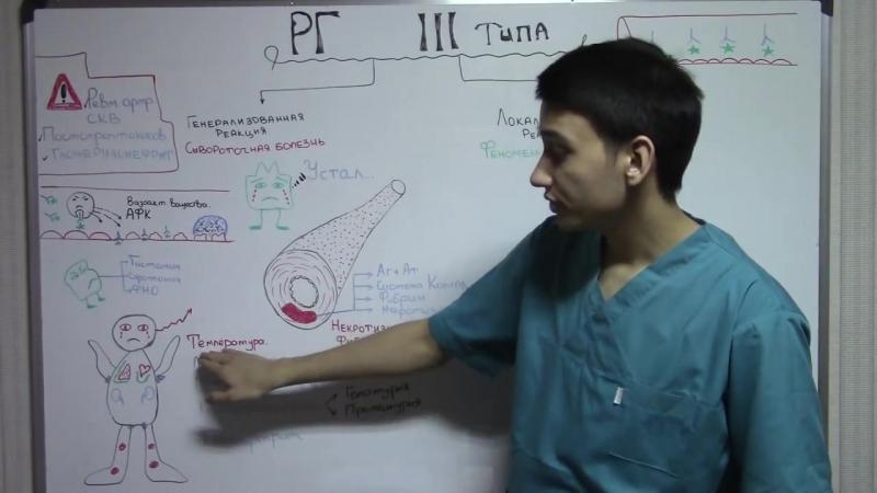 Гиперчувствительность 3 типа Патологическая физиология Аллергология