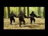 ☑️Прикольный мультяшный клип! Поднимаем настроение! Даже животные танцуют! Весна пришла! Прикол 2017