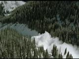 Твои веселые друзья зверята - 5 серия - Северный олень Роузи