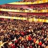 Цикл вебинаров для концертных менеджеров