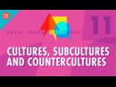 the role of subculture and countercultures New forms of musical presentation also played a key role in spreading the counterculture, mainly large outdoor rock festivals the climactic live statement of this.