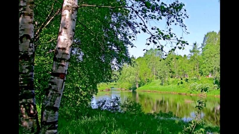 С. Есенин - Выткался на озере алый свет зари.