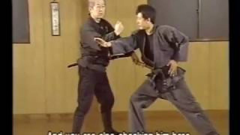 Masaaki Hatsumi - Bujinkan Mutodori