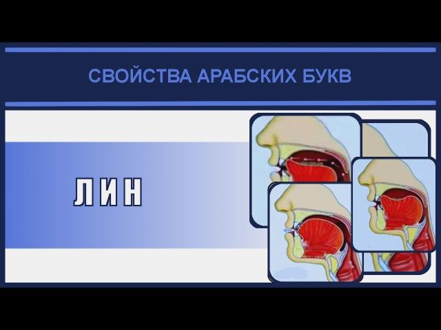 Айман Сувейд. 13. Лин (с субтитрами на русском)ᴴᴰ
