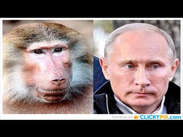 Сенсация Жена Путина призналась что ее муж давно убит!