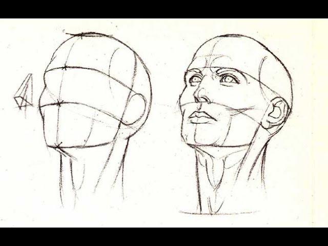 Как Нарисовать голову спереди, сбоку и с любого ракурса ПРОСТОЙ СПОСОБ. Пропорции головы.