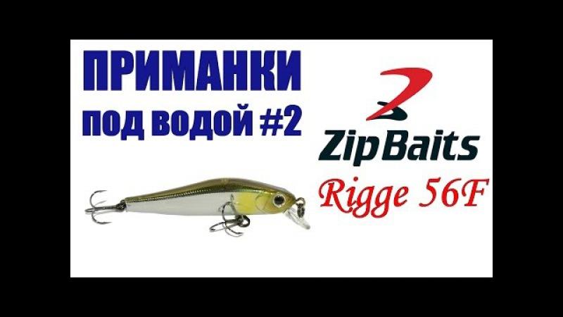 Приманки под водой 2. Воблер ZipBaits Rigge 56F SR / Подводные съемки воблеров