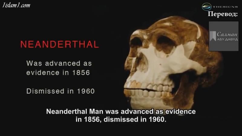 Эволюция вымерла путём естественного отбора.