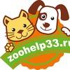 Зоохелп33 - помощь бездомным животным г.Владимир