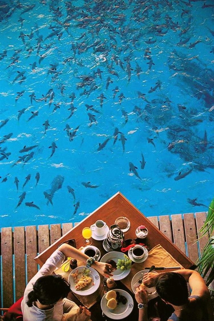 Остров Бора-Бора: Жемчужина в океане