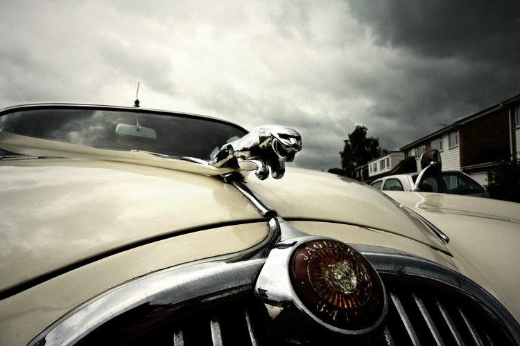 Ягуар (Jaguar) - машина-зверь!