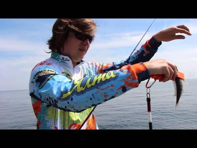 Морские проводки 2 Как ловить смариду окуня Рокфишинг это просто