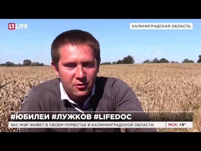 Старик и поле. Фермер Лужков в прусском интерьере LifeDoc