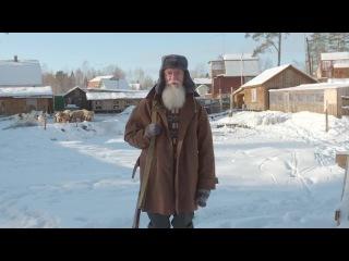 Дед старпёр (стартапер) / Old fart (startup) · #coub, #коуб