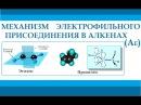 Алкены Механизм реакции электрофильного присоединения