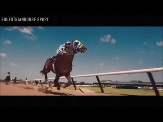 ~ Конный спорт ~ Мечта твоя T-killah ~ Equestrian sport ~