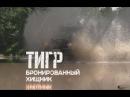 Тигр Бронированный хищник Военная приемка