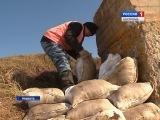 Ждать ли жителям Нерехтского района Костромской области весеннего подтопления?