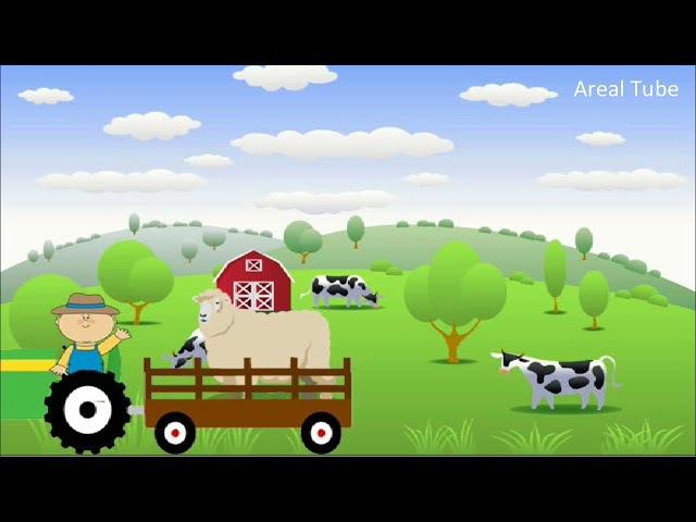 Suara Hewan Ternak Untuk Anak Anak Suara Domba