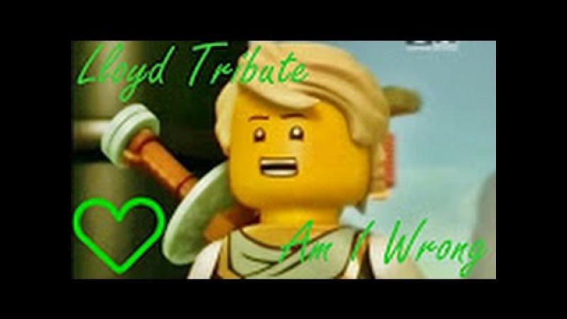 LEGO Ninjago Lloyd Tribute Am I Wrong ♪