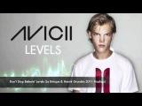 Avicii vs. Journey - Don't Stop Believin' Levels (Le Brinque &amp Henrik Grund