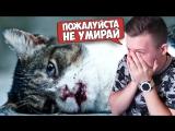 Тест на психику - ЧТО ОН ИМ СДЕЛАЛ ПЛОХОГО?! Самое грустное видео в мире!!! Попробуй Не Заплакать Че