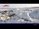 В Оренбурге жители сами оперативно помогли задержать педофила по горячим следам!