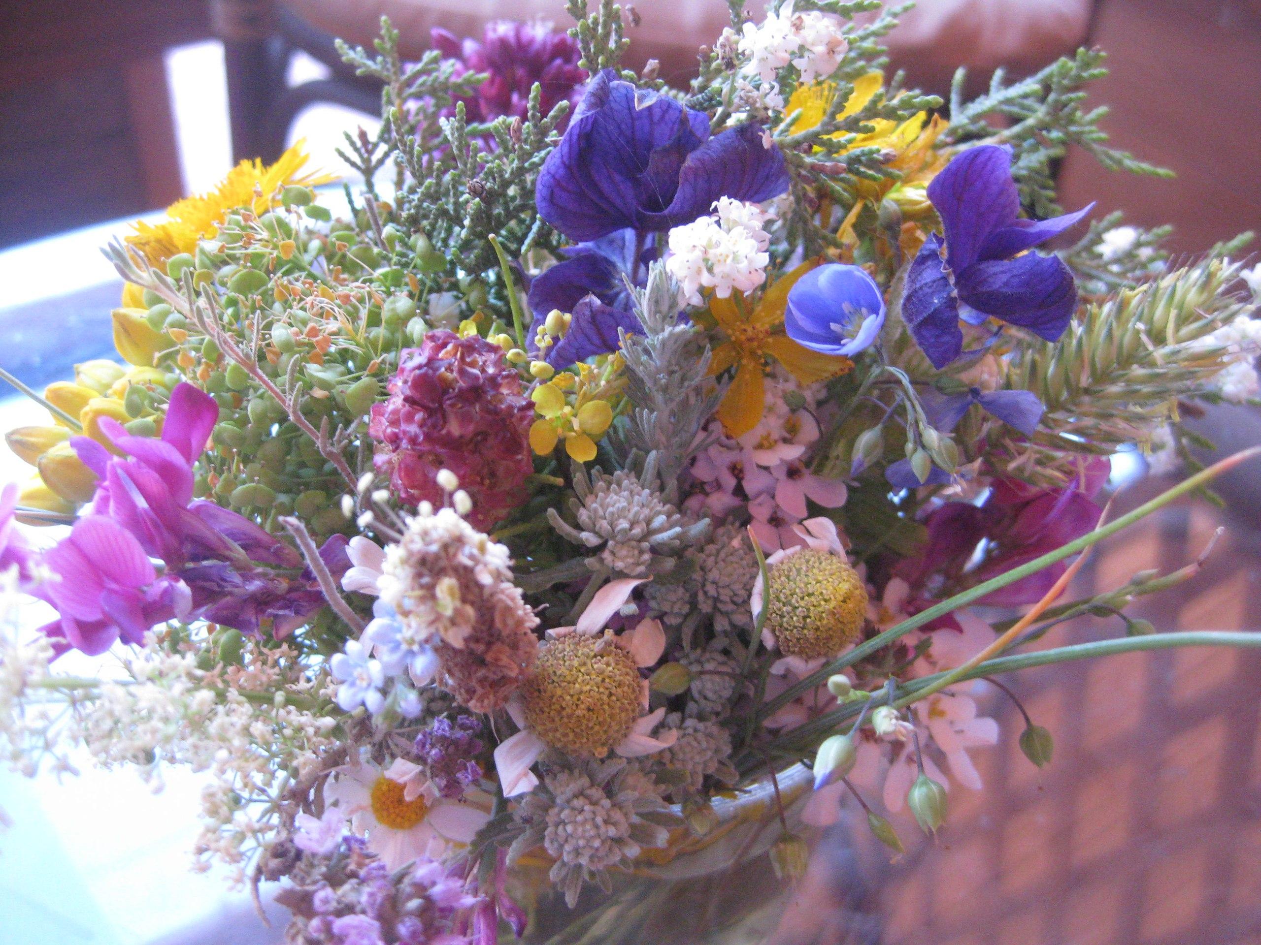 Цветы самшит фото
