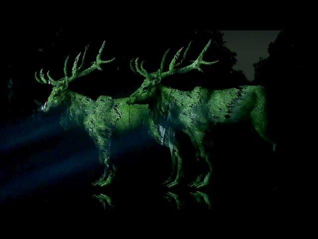 Midsummer Night's Dream | Projections by Sila Sveta