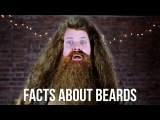 FACTS ABOUT BEARDS | MOVEMBER
