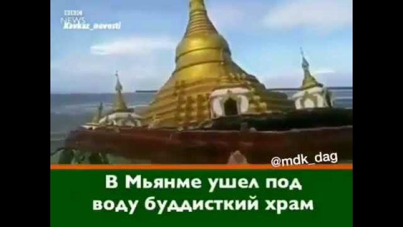 Аллах наказал буддистов. В Мьянме ушел под воду буддисткий храм » Freewka.com - Смотреть онлайн в хорощем качестве