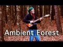 Ambient Guitar Meditation - Your Head Is A Living Forest (Fender Baritone Guitar)
