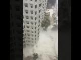 Curtis何珀廉強颱風天鴿10號風球各區情況 23 Aug 2017