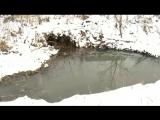Сточная канава на ул. Кольцова отравляет зловонием всю Бугровку