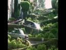 Самая извилистая улица в мире длинной в 400 метров Сан Франциско