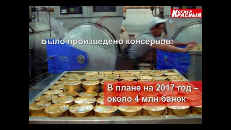 С начала года «Салехардский комбинат» произвел почти 2,5 миллиона банок консервов и свыше 60 тонн другой рыбной продукции