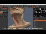 Концепт персонажа и техники скульптинга в 3D Coat
