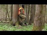 Занятия в лесу с собаками по поиску, обнаружению и силовому задержанию человека.