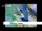 no comment день назад Не для слабонервных: в Китае стеклянный мост трескается под ногами туристов