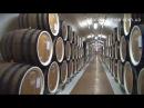 Массандра дегустация, вино, завод, подвал