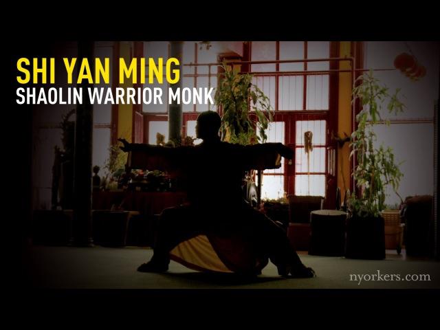 Интервью монаха Ши Янь Мин, живущего в Нью Йорке | Документальное