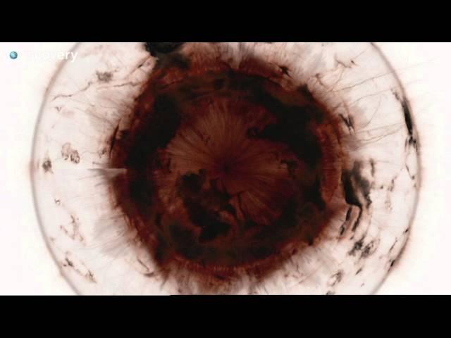 Внутри черной дыры Как устроена Вселенная