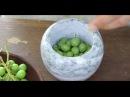 9 Средневековая кухня Италии. Как приготовить баклажаны по рецепту Мартино да Комо