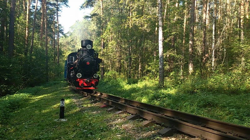 ВП4-1425 первый рейс с пассажирами в рамках II орума «Сохранение исторического наследия узкоколейных железных дорог»