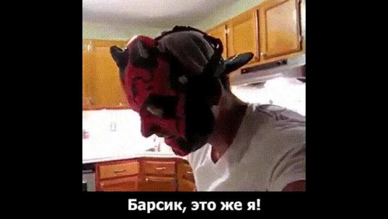 Барсик, это же я))