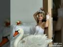 Принцесса лебедь)