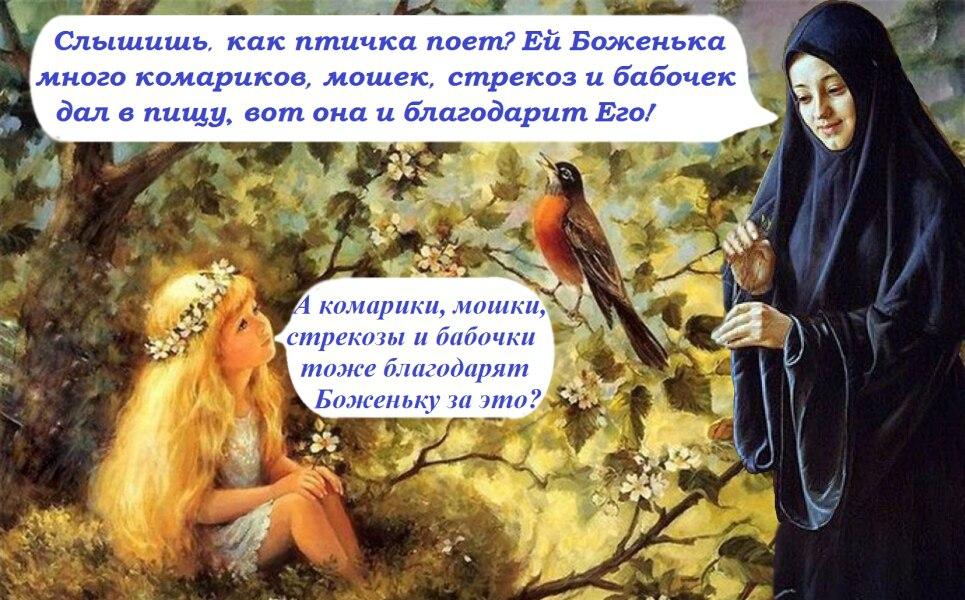 https://pp.vk.me/c837326/v837326795/254f8/xyaTPISZGZk.jpg